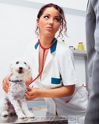 Angel Dark is a veterinarian and she wants to fuck this guy